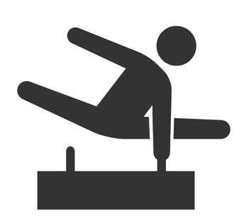 Inspired by pommel horse